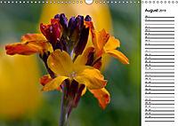 Naturschönheiten Nahaufnahmen (Wandkalender 2019 DIN A3 quer) - Produktdetailbild 8
