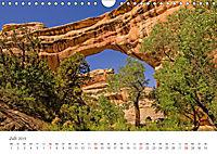 Naturwunder mit Indian Spirit (Wandkalender 2019 DIN A4 quer) - Produktdetailbild 7