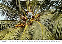 Neue Malediventräume (Wandkalender 2019 DIN A2 quer) - Produktdetailbild 6