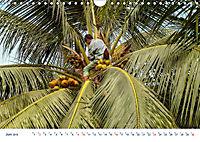 Neue Malediventräume (Wandkalender 2019 DIN A4 quer) - Produktdetailbild 6