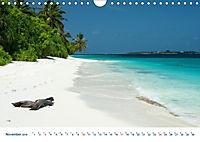 Neue Malediventräume (Wandkalender 2019 DIN A4 quer) - Produktdetailbild 11