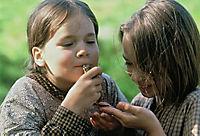 Neues von den Kindern aus Bullerbü - Produktdetailbild 1