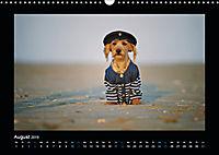 Neues von Elli Pirelli, dem fröhlichen Pinscherdackelmädel (Wandkalender 2019 DIN A3 quer) - Produktdetailbild 8
