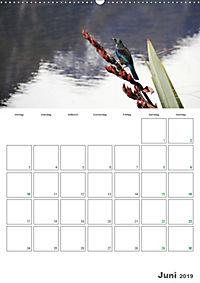 Neuseeland - Vielfalt der Südinsel (Wandkalender 2019 DIN A2 hoch) - Produktdetailbild 6