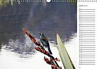 Neuseeland - Vielfalt der Südinsel (Wandkalender 2019 DIN A3 quer) - Produktdetailbild 6
