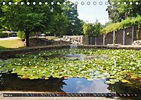 Neustadt am Rübenberge Natur in Stadtnähe (Tischkalender 2019 DIN A5 quer) - Produktdetailbild 5