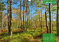 New England - Vielfalt einer Region (Wandkalender 2019 DIN A3 quer) - Produktdetailbild 5
