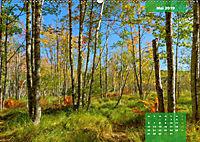 New England - Vielfalt einer Region (Wandkalender 2019 DIN A2 quer) - Produktdetailbild 5
