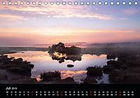 New Forest - England (Tischkalender 2019 DIN A5 quer) - Produktdetailbild 7