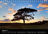 New Forest - England (Tischkalender 2019 DIN A5 quer) - Produktdetailbild 8