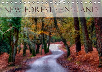 New Forest - England (Tischkalender 2019 DIN A5 quer), Joana Kruse
