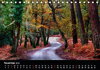 New Forest - England (Tischkalender 2019 DIN A5 quer) - Produktdetailbild 11