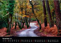New Forest - England (Wandkalender 2019 DIN A2 quer) - Produktdetailbild 11