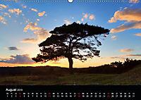New Forest - England (Wandkalender 2019 DIN A2 quer) - Produktdetailbild 8
