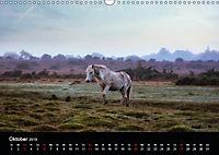 New Forest - England (Wandkalender 2019 DIN A3 quer) - Produktdetailbild 10