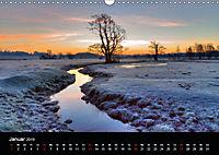 New Forest - England (Wandkalender 2019 DIN A3 quer) - Produktdetailbild 1