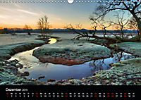 New Forest - England (Wandkalender 2019 DIN A3 quer) - Produktdetailbild 12