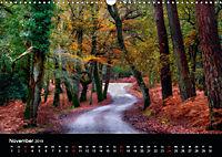 New Forest - England (Wandkalender 2019 DIN A3 quer) - Produktdetailbild 11