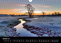 New Forest - England (Wandkalender 2019 DIN A4 quer) - Produktdetailbild 1