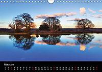 New Forest - England (Wandkalender 2019 DIN A4 quer) - Produktdetailbild 3