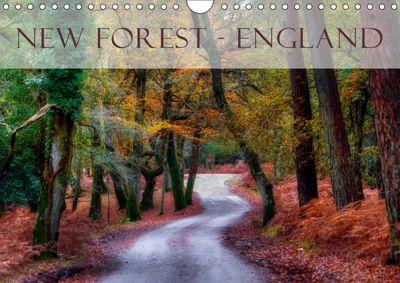 New Forest - England (Wandkalender 2019 DIN A4 quer), Joana Kruse