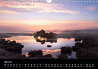New Forest - England (Wandkalender 2019 DIN A4 quer) - Produktdetailbild 7