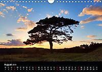 New Forest - England (Wandkalender 2019 DIN A4 quer) - Produktdetailbild 8