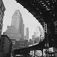 New York Retrospective 2019 - Produktdetailbild 6