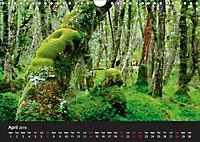 New Zealand (Wall Calendar 2019 DIN A4 Landscape) - Produktdetailbild 4