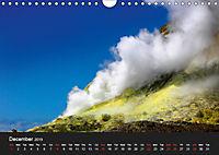 New Zealand (Wall Calendar 2019 DIN A4 Landscape) - Produktdetailbild 12