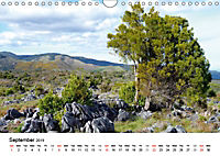 New Zealand's Endless Landscapes (Wall Calendar 2019 DIN A4 Landscape) - Produktdetailbild 9