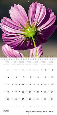 Niagara Gardens (Wall Calendar 2019 300 × 300 mm Square) - Produktdetailbild 3