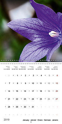 Niagara Gardens (Wall Calendar 2019 300 × 300 mm Square) - Produktdetailbild 1