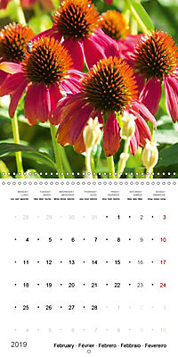 Niagara Gardens (Wall Calendar 2019 300 × 300 mm Square) - Produktdetailbild 2