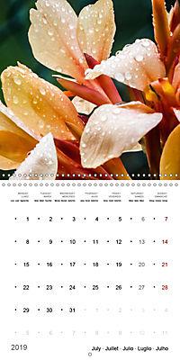 Niagara Gardens (Wall Calendar 2019 300 × 300 mm Square) - Produktdetailbild 7