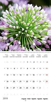 Niagara Gardens (Wall Calendar 2019 300 × 300 mm Square) - Produktdetailbild 8