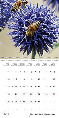 Niagara Gardens (Wall Calendar 2019 300 × 300 mm Square) - Produktdetailbild 5