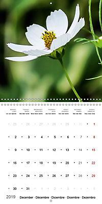 Niagara Gardens (Wall Calendar 2019 300 × 300 mm Square) - Produktdetailbild 12