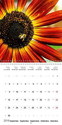Niagara Gardens (Wall Calendar 2019 300 × 300 mm Square) - Produktdetailbild 9