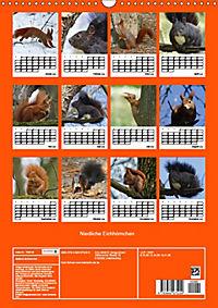 Niedliche Eichhörnchen (Wandkalender 2019 DIN A3 hoch) - Produktdetailbild 13