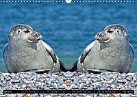 Niedliche Tierzwillinge (Wandkalender 2019 DIN A3 quer) - Produktdetailbild 7