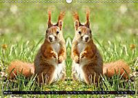 Niedliche Tierzwillinge (Wandkalender 2019 DIN A3 quer) - Produktdetailbild 5