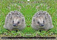 Niedliche Tierzwillinge (Wandkalender 2019 DIN A3 quer) - Produktdetailbild 9