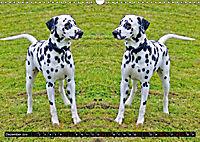 Niedliche Tierzwillinge (Wandkalender 2019 DIN A3 quer) - Produktdetailbild 12