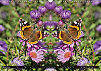 Niedliche Tierzwillinge (Wandkalender 2019 DIN A3 quer) - Produktdetailbild 3