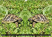Niedliche Tierzwillinge (Wandkalender 2019 DIN A3 quer) - Produktdetailbild 4