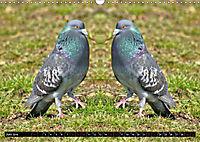 Niedliche Tierzwillinge (Wandkalender 2019 DIN A3 quer) - Produktdetailbild 6