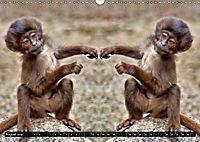 Niedliche Tierzwillinge (Wandkalender 2019 DIN A3 quer) - Produktdetailbild 8