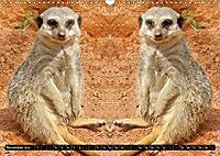 Niedliche Tierzwillinge (Wandkalender 2019 DIN A3 quer) - Produktdetailbild 11