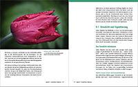 Nikon D5500 - Für bessere Fotos von Anfang an! - Produktdetailbild 16